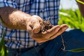 Are you thinking of switching from surface irrigation to another form of irrigation?